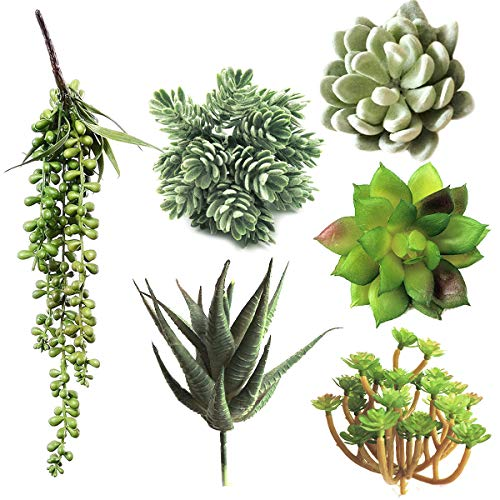 6 Pcs Unpotted Artificial Succulents Assorted Faux Succulent in Different Green Hanging Succulents Textured Faux Succulent Pick Hanging String of Pearls Plant for Wedding Centerpieces (Green, 6 Pcs)