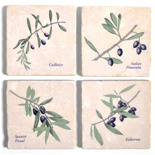 - Studio Vertu Olives Marble Coasters, Set of 4
