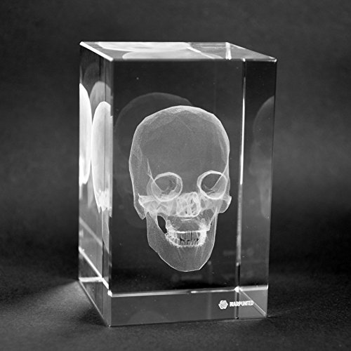 Crystal 3D Human Skull Anatomy High Definition Laser Engraved Medical Gift for Doctors, Nurses, Medical Students Table Decoration 1lb Optical Glass by Warp United