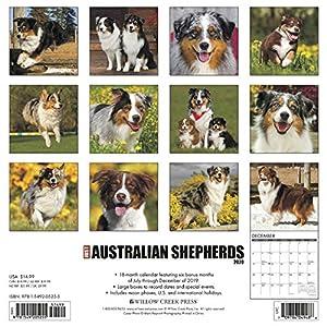 Just Australian Shepherds 2020 Wall Calendar (Dog Breed Calendar) 39