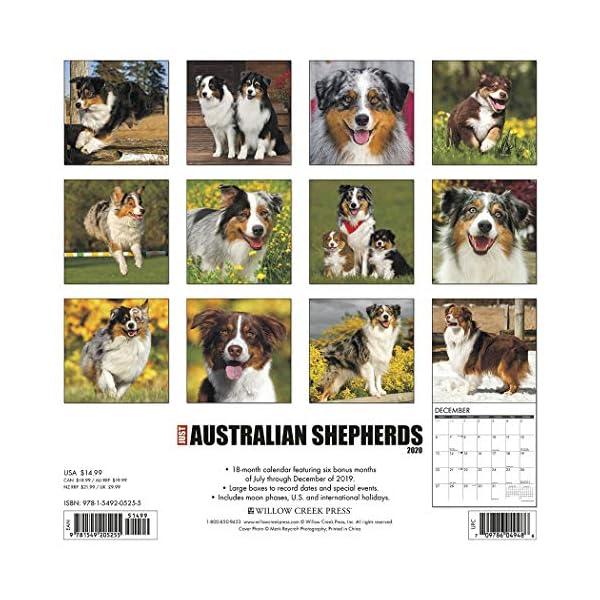 Just Australian Shepherds 2020 Wall Calendar (Dog Breed Calendar) 1