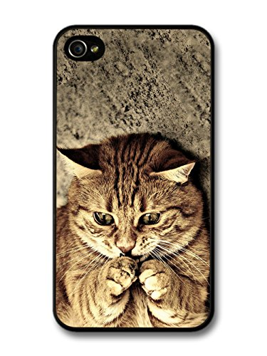 Cool Cute Funny Cat Meme Animal Nature case for iPhone 4 4S
