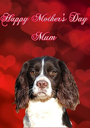 3b6261d1e30c English Springer Spaniel Dog MDH22 Cute Happy Mother's Day Card Personalised  Greetings: Amazon.co.uk: Office Products