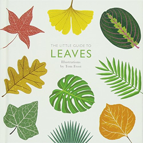 Little Leaf - The Little Guide to Leaves