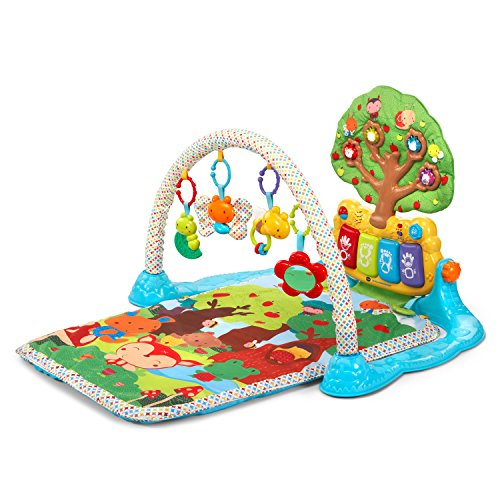 VTech Baby Lil' Critters Musical Glow Gym (Activity Infant Gym)