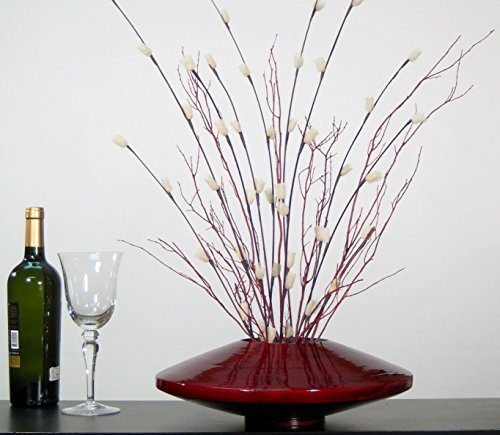 14 Inch Red Bamboo Zen Vase & DIY Floral Kit of Ivory Florets & Red Branches ()