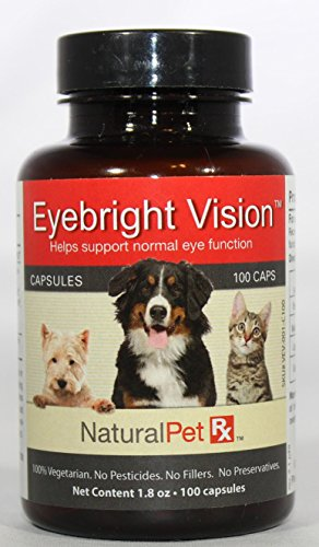Bright Sight Eye Care - 7