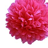 Dress My Cupcake 5-Inch Fuchsia Tissue Paper Pom Poms, Bachelorette Decorations and Party Supplies, Set of 8 by Dress My Cupcake