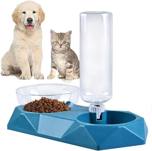 Queta Comedero y Bebedero Gatos Perros, 3 en 1 Tazón Soporte y Botella Pet para Gatos Mascotas, Tazón de Comida Gatos y Perros Pequeños, Dispensador de Agua Automático (Verde): Amazon.es: Productos para