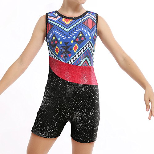 Leotards for Girls Gymnastics Ballet Dance Navy Blue Ethnic Print Red Stripe - Blue Navy Old Shorts