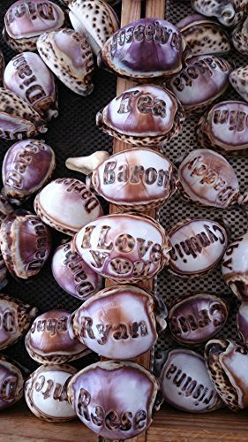 Names Engraved on a Tiger Cowrie Seashell. All Natural - Personalized One of a kind Custom Hand Made