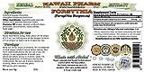 Forsythia Alcohol-FREE Liquid Extract, Organic Forsythia (Forsythia Suspensa) Dried Fruit Glycerite 2x2 oz