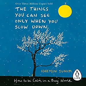The Things You Can See Only When You Slow Down Hörbuch
