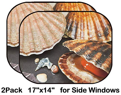 Liili Car Sun Shade for Side Rear Window Blocks UV Ray Sunlight Heat - Protect Baby and Pet - 2 Pack Various Seashells on Wet sea Stones Open Scallop Macro Selective Focus Image ID 14