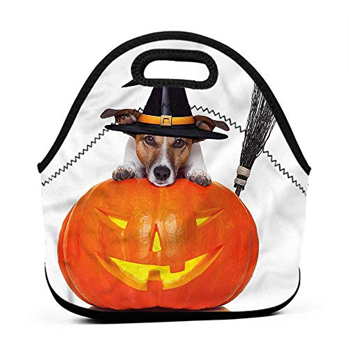 Rugged Lunchbox Halloween,Witch Dog with Broomstick,cat lunch bag for men -
