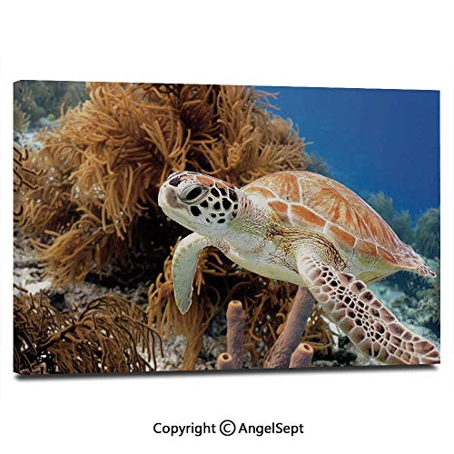 (Modern Gallery Wrapped Coral Reef and Sea Turtle Close Up Photo Bonaire Island Waters Maritime Pictures on Canvas Wall Art Ready to Hang for Living Room Kitchen Home Decor,12