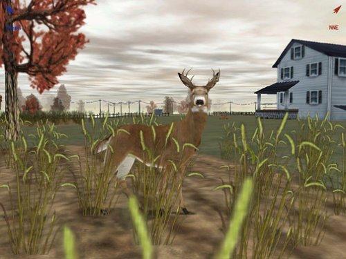 Deer hunter 2005 torrent cracked pc