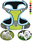 GAUTERF Small Dog Harnesses Green Fluorescent Adjustable Outdoor Pet Vest High Visibility Reflective Reinforced Straps Dog Harness Escape Proof Harness fit Puppy(Small, Fluorescent Green)