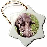 3dRose orn_83933_1 Common Warthog, Wildlife, Tanzania Africa NA02 DNO0387 David Northcott Snowflake Porcelain Ornament, 3-Inch