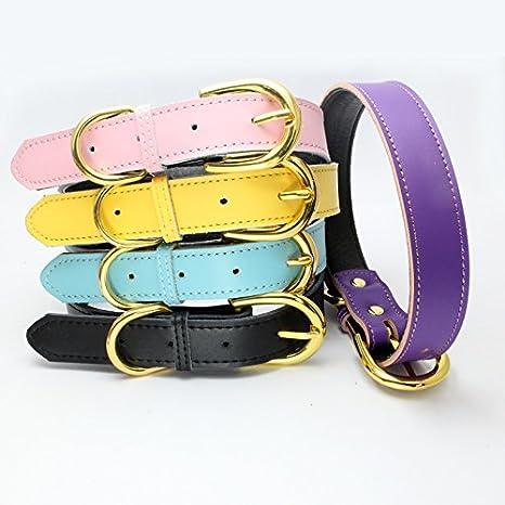 Mcdobexy Klassische weiche gepolsterte Leder Hundehalsband f/ür Katzen Welpen kleine mittelgro/ße Hunde