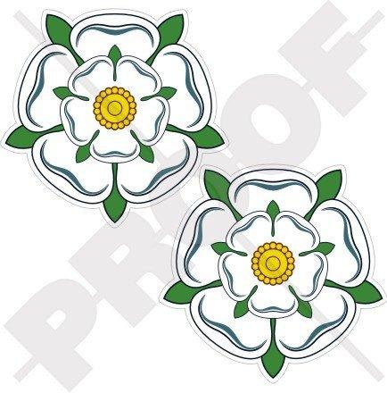 WHITE ROSE of YORK Flower YORKSHIRE England UK 75mm (3