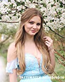 """Tressmatch 20""""(22'') Clip in Premium Remy Human Hair Extensions Thick to Ends Ombre Chestnut/medium Brown to Natural Blonde 10 Pieces(pcs) Full Head Volume Set [Set Weight:5.3oz/150grams]"""