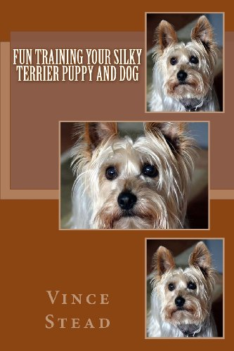 Fun Training your Silky Terrier Puppy and Dog Silky Terrier Puppies