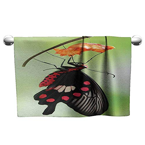 (alisoso Swallowtail Butterfly,Hand Towels Amazing Moment Coming Out of Cocoon Chrysalis Transformation Machine Washable Red Black Green W 24