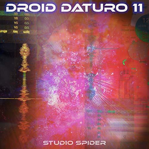 Studio Spider