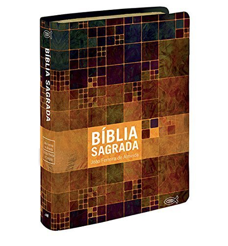 Bíblia Sagrada - Media Grande. Neutra Estampada