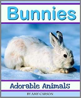 Bunnies: A Collection of Cute Bunny Photos (Adorable Animals)