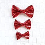 Sparkle Glitter Red - Bow Tie Collar Slide On, Collar Add On Bowtie, Bow Collar Accessories