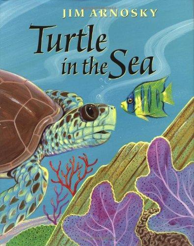 Turtle in the Sea ebook