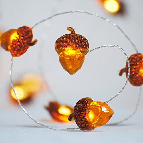 Impress Life Decorative Lights, Acorn Lights String 10 ft Copper Wire 40 LEDs New Battery-Powered for Ice Age, Camping, Wedding, Birthday Parties, Bedroom Decorations with Dimmable Remote & Timer by Impress Life (Image #1)