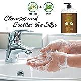 Tea Tree Mint Hand Soap - Liquid Hand Soap with