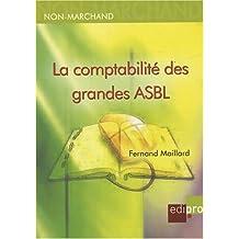 La comptabilité des grandes et très grandes associations : (ASBL, AISBL et fondations)