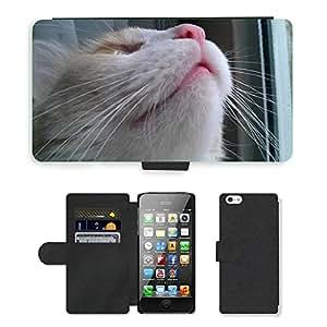 Super Stella Cell Phone Card Slot PU Leather Wallet Case // M00144942 Cat Cute Cat Cat Face Kitten Feline // Apple iPhone 5 5S 5G