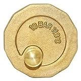 Beduan Brass 10500-VE Automatic Float