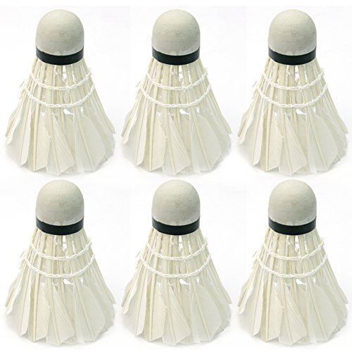 6Pcs White Goose Feather Badminton Shuttlecocks Outdoor Ball Game Training New