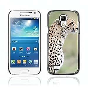 Carcasa Funda Case // V0000781 Cheetah Animal Pattern //Samsung Galaxy S4 MINI i9190 i9192 i9195