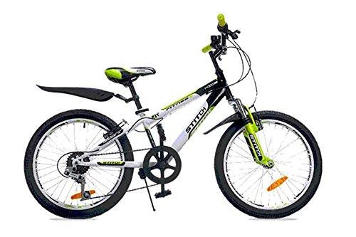 Cyfie フェニース 子供用自転車 20インチ 6段変速 スタンド型 泥よけ付 簡単に安装 ジュニアマウンテンバイク スポーティサドル 日本発送 B01HODBW84グリーン