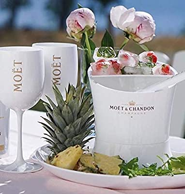 Moet /& Chandon Champagne Ice Imperial Ice Cubes Mini Bucket Small Fruit and Mint Bowl