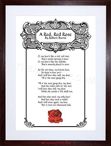 Burns Framed Print - The Art Stop Quote Song Lyrics RED Rose Robert Burns Framed Print F97X6227