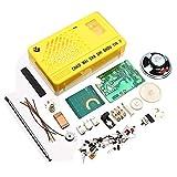 DDIY SW FM Radio Electronics Kit Electronic DIY Soldering Project Learning Kit