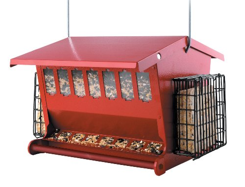 Seeds n More Metal Hopper Bird Feeder
