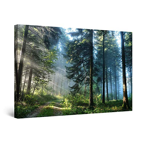 STARTONIGHT Wall Art Canvas Road in The Forest, Nature Framed 24 x 36 Inches ()