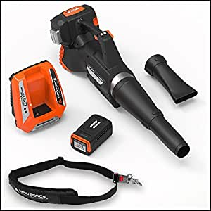 Yard Force 120vRX Lithium-Ion Blower with Push-Button Speed Control - COMPLETE with Battery and Fast Charger included