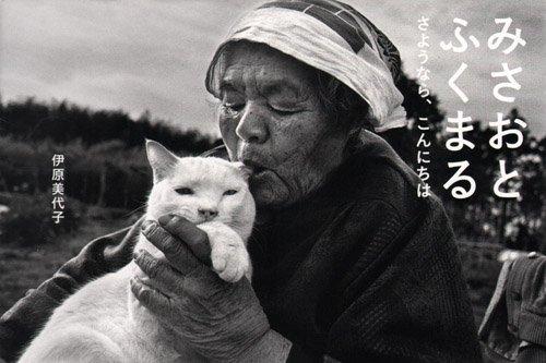 Misao, The Big Mama And Fukumaru The Cat Goodbye Hello pdf epub