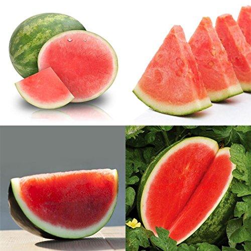 Atmeyol_Seeds 30pcs Seedless Watermelon Seeds Sweet Fruit Melon Seeds Home Garden Flowers