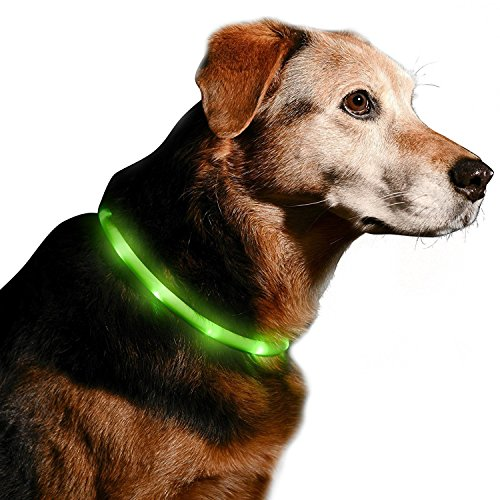 LED Dog Collar - Perfect Flashing Rechargeable Pet Safety USB Charging Pet Cat Collar Colorful Glows with Various Colors in Night Bright Size Adjustable Mode for Small Medium or Large Dogs (L(27.5in))
